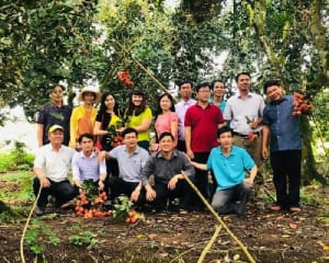 Tour Hằng Ngày - Miệt Vườn Cây Trái Miền Tây