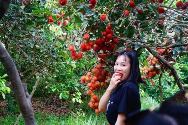 Tour Miền Tây 2 Ngày - Vườn Trái Cây - Chợ Nổi Miền Tây.